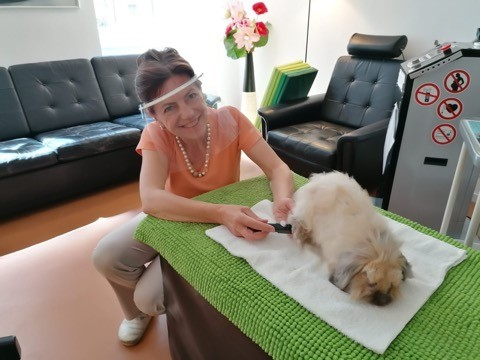 Tierarztpraxis Dr. Maria Scheller