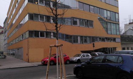 Bäume in der Missindorfstraße sind gepflanzt!